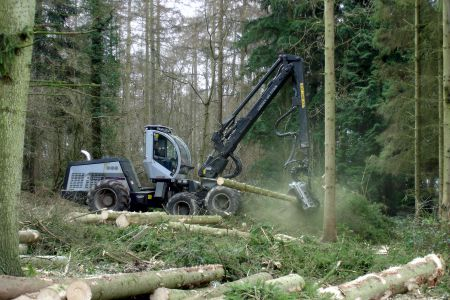 Devon Forestry Planning